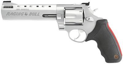 454 CASULL RAGING BULL SS 6.5` BBL