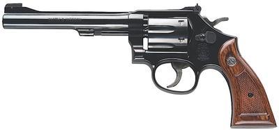 22LR M-17 6` BBL BLUED