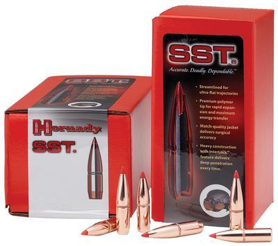 30CAL .308 150GR SST