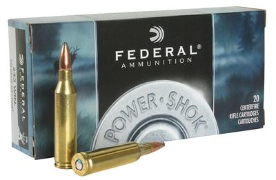 243WIN POWER-SHOK 100GR SFT